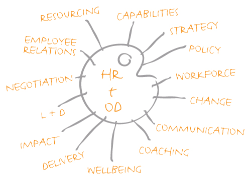 HR and OD qualities